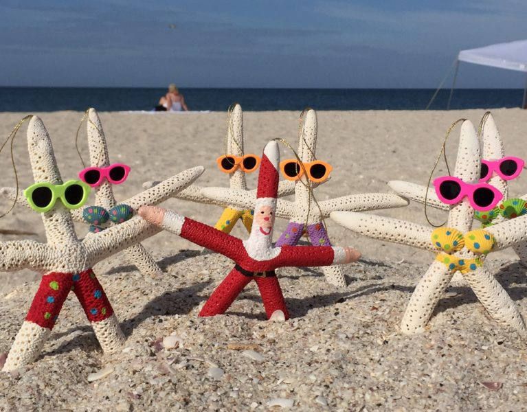 Santa Star Fish and Friends at the Beach